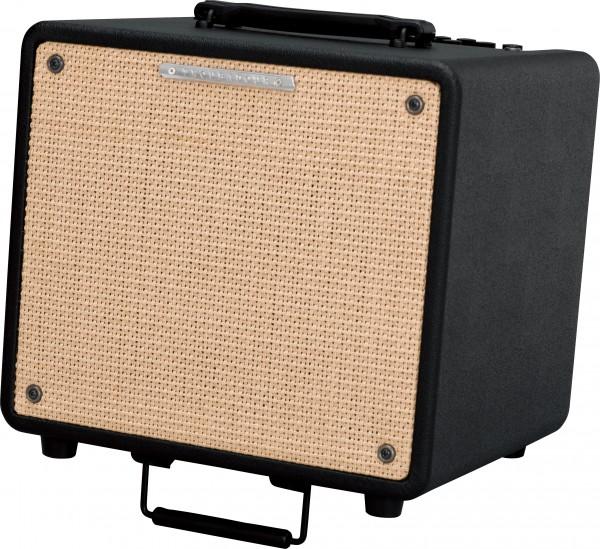 Ibanez T80N Acoustic Amp (B-Stock)