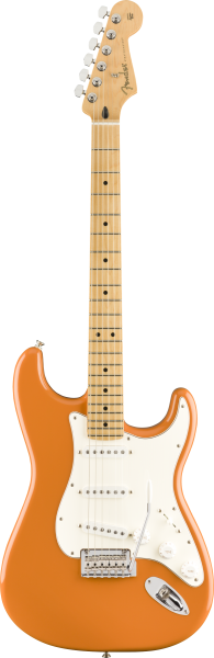 Fender PLAYER STRAT MN CAPRI